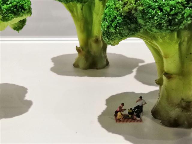 ブロッコリーの木陰で休む人