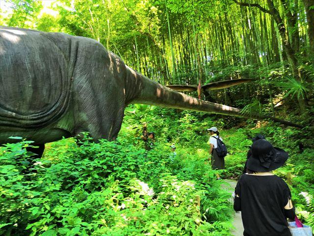 ブラキオサウルスのしっぽ
