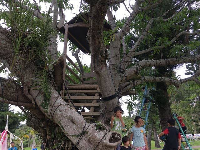 木のハウス