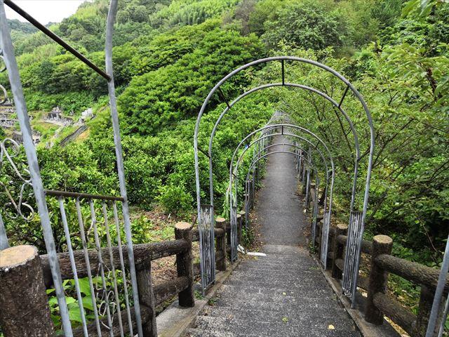 お墓への道
