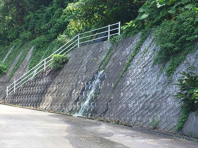 駐車場の湧水