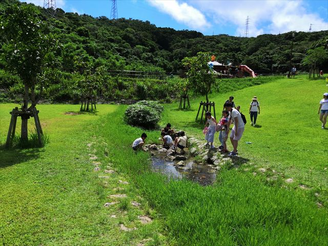 小川で遊ぶ子ら