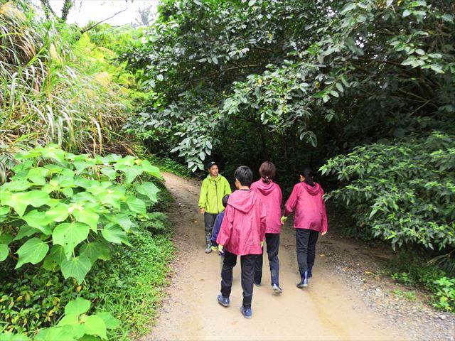 つづいてジャングル探検
