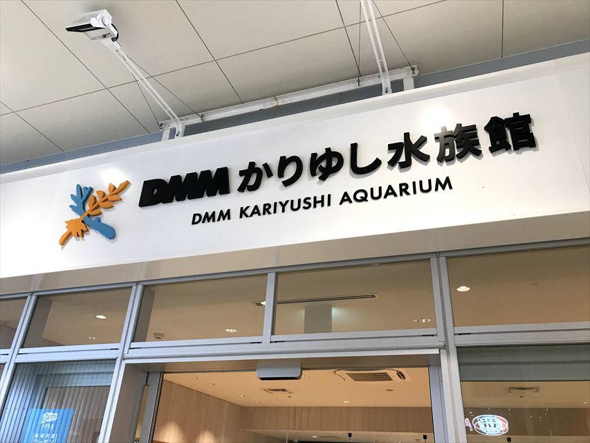 【沖縄生活】DMMかりゆし水族館でナマケモノと遭遇する!